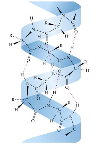 Кератин - белок для выпрямления волос