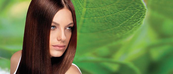 Процедуры по восстановлению волос в салоне красоты